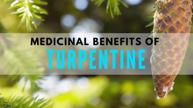 Turpentine as a medicine